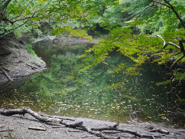 M.ZUIKO DIGITAL 25mm F1.8で撮影した風景写真画像