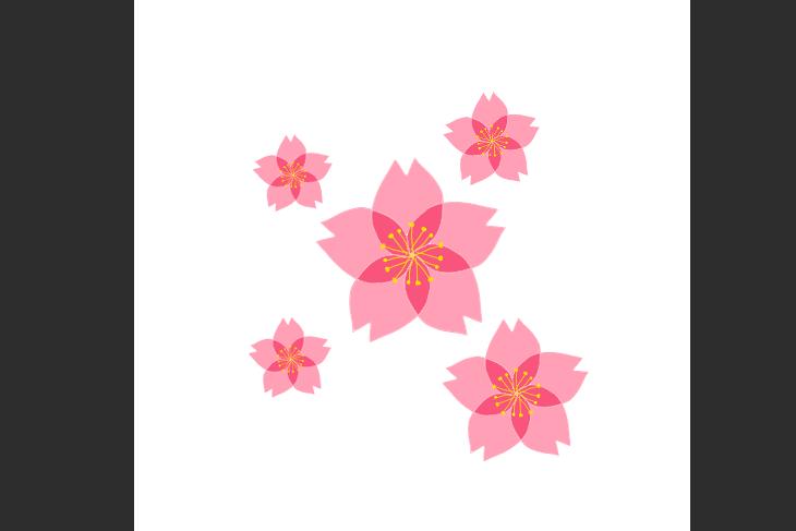 CLIP STUDIO PAINT PROで作成した桜の花素材画像